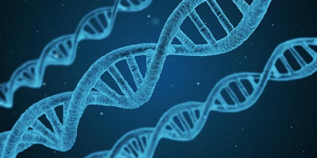 Análisis cannabinoides e I+D en genética